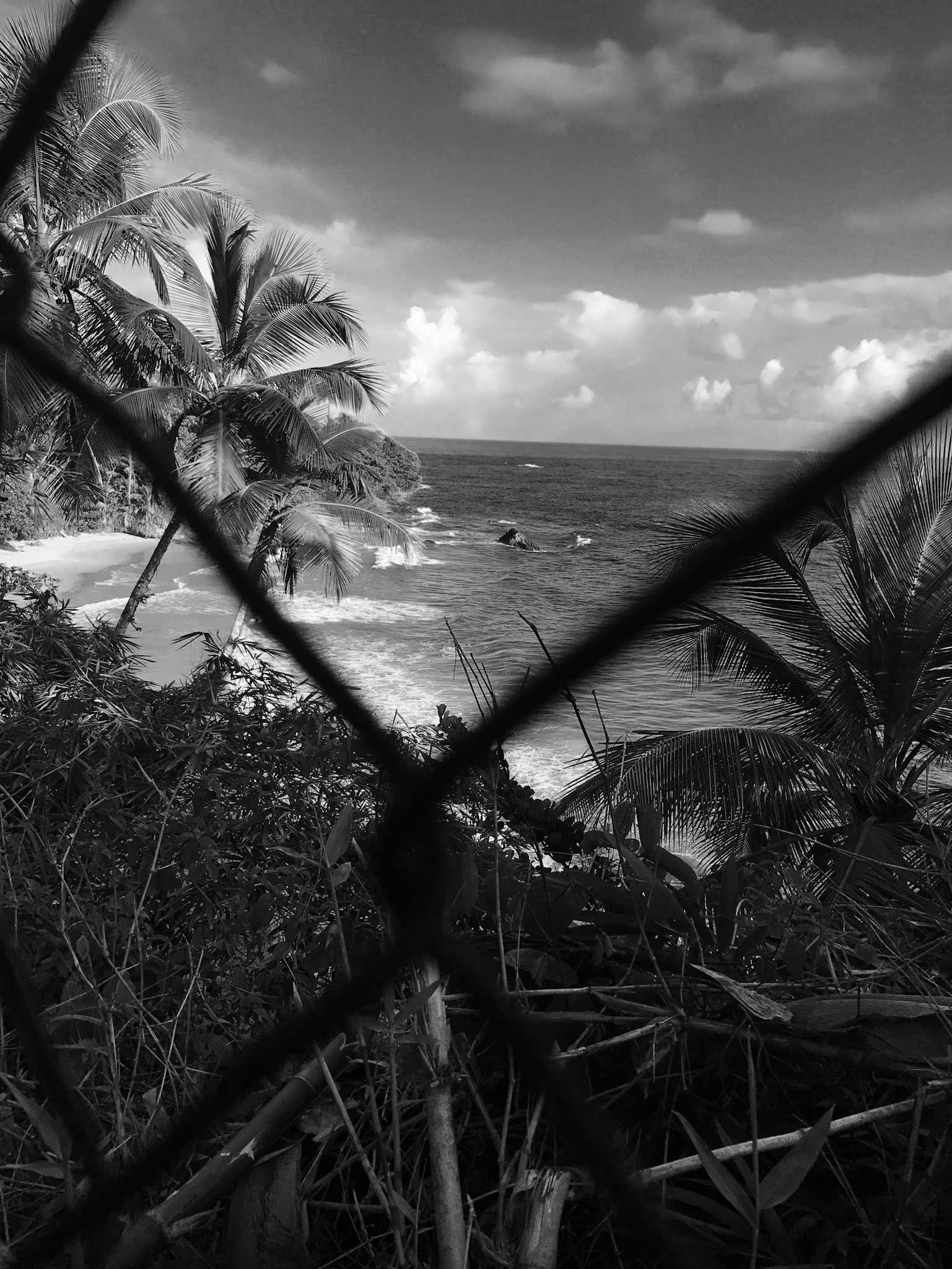 Chris Ofili: Caged in Paradise | by Joshua Jelly-Schapiro