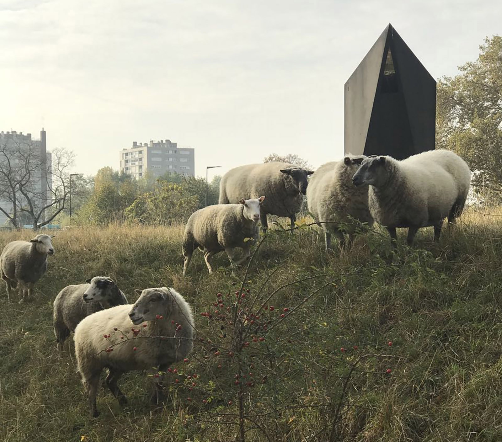 Paris Pastoral: A City Recultivated | by Mira Kamdar | NYR