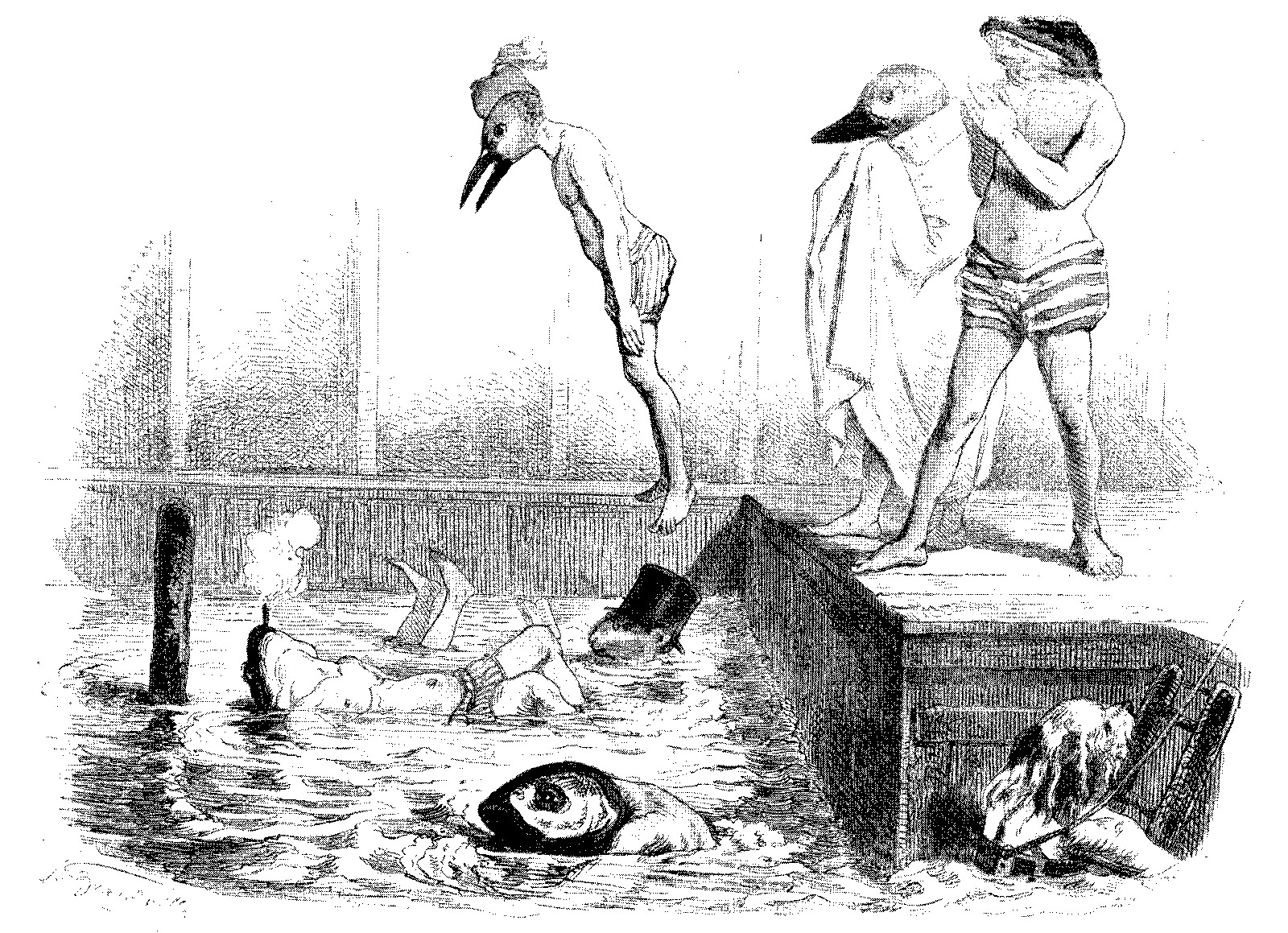 Drawing of animals diving into a pool