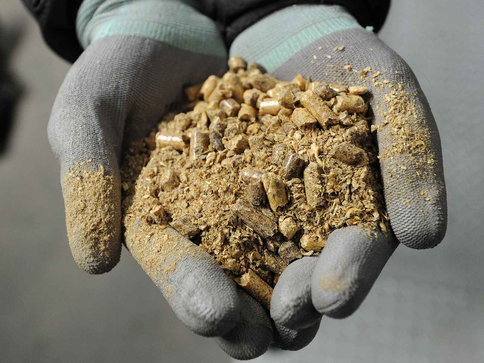 The Great Biomass Boondoggle
