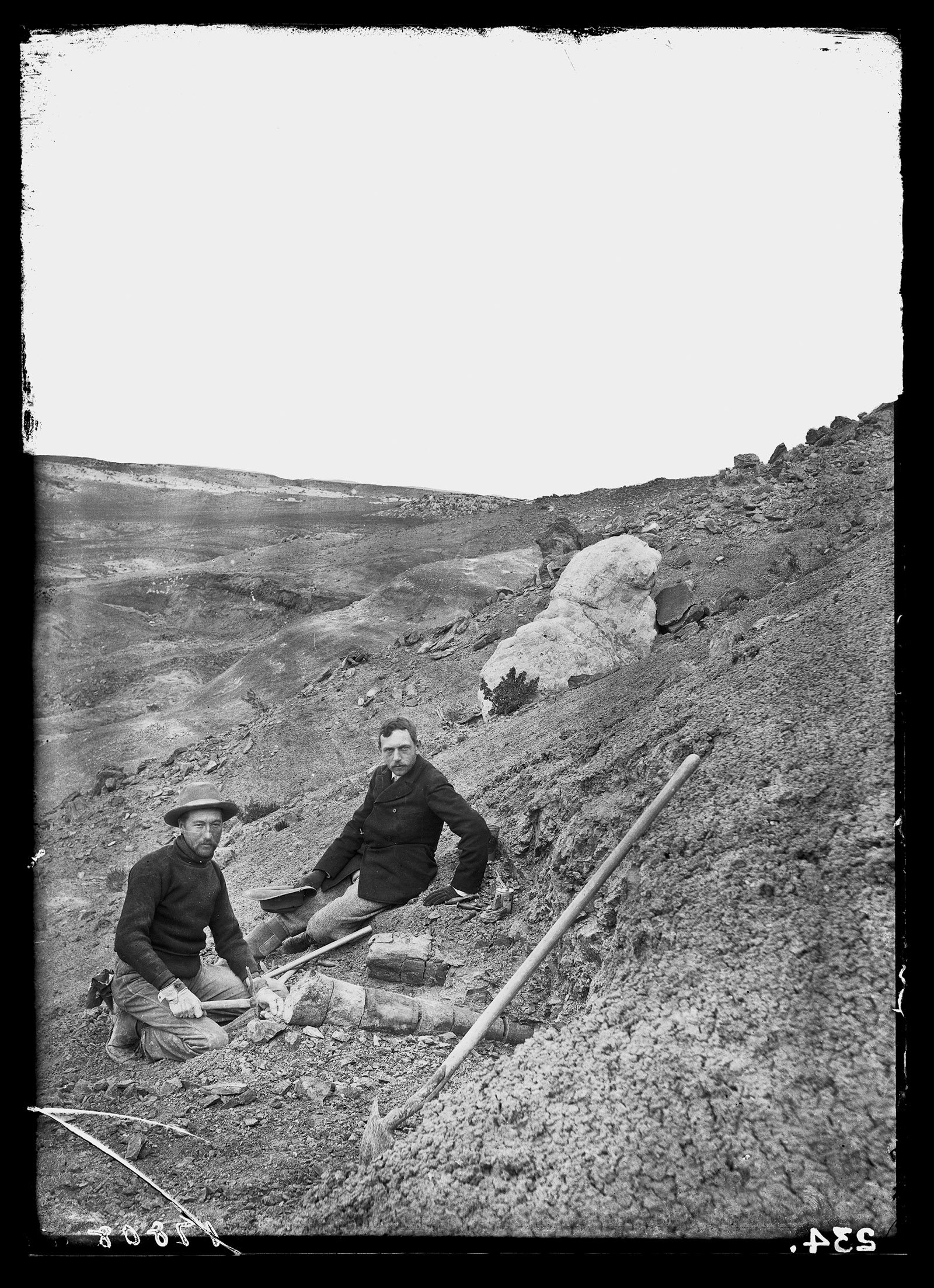 The paleontologist Barnum Brown and the director of the American Museum of Natural History, Henry Osborn, excavating a Diplodocus skeleton, Wyoming, 1897