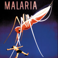 A poster for a US public health campaign urging precautions against malaria, circa 1920