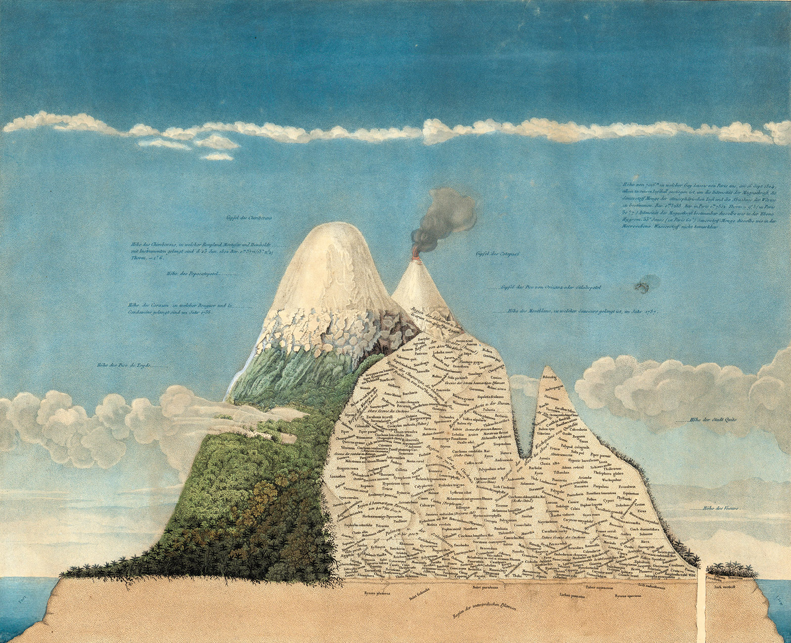 Chimborazo and Cotopaxi volcanoes in the Andes; from Humboldt's Geography of Plants in Tropical Countries, 1807. The text on the volcanoes shows the distribution of plant species by altitude.