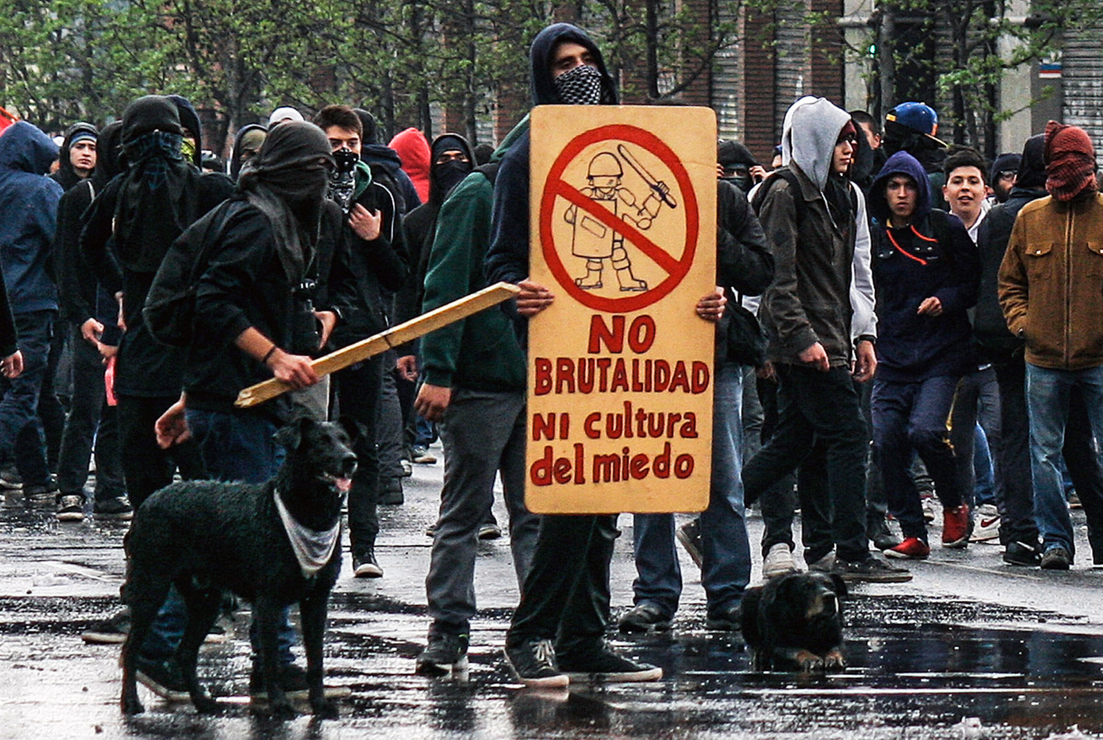 Student protesters with dogs, Chile, 2012