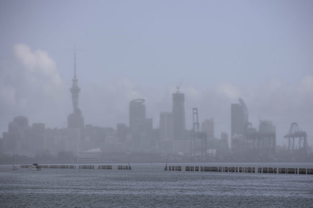 auckland-covid