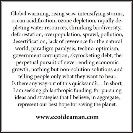 Ad for ecoideaman.com