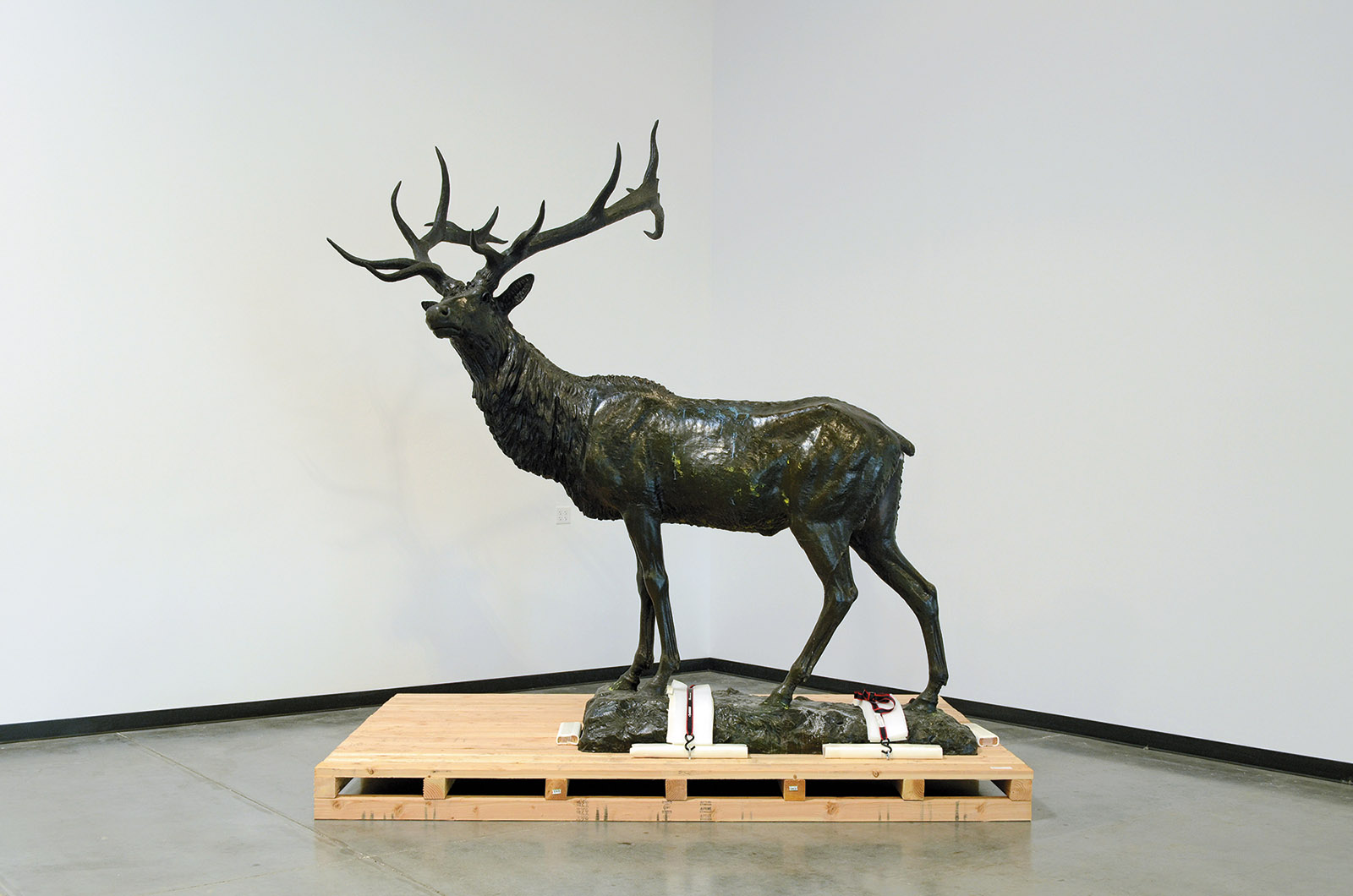 Roland Hinton Perry's Elk in the undisclosed location where it has been stored during the protests against police brutality in Portland, Oregon
