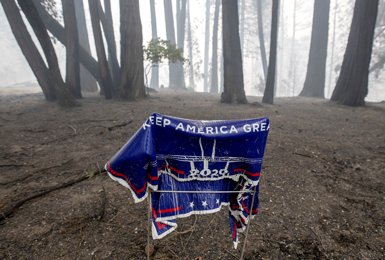 A melted Trump/Pence campaign sign after the Bear Fire, Feather Falls, California