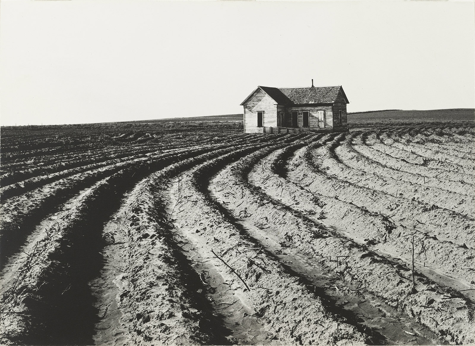 Tractored Out, Childress County, Texas, 1938; photograph by Dorothea Lange