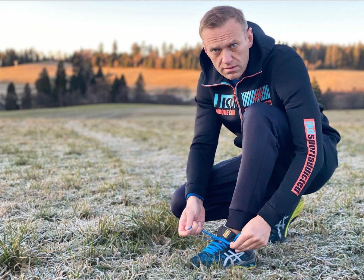 Aleksei Navalny in Germany