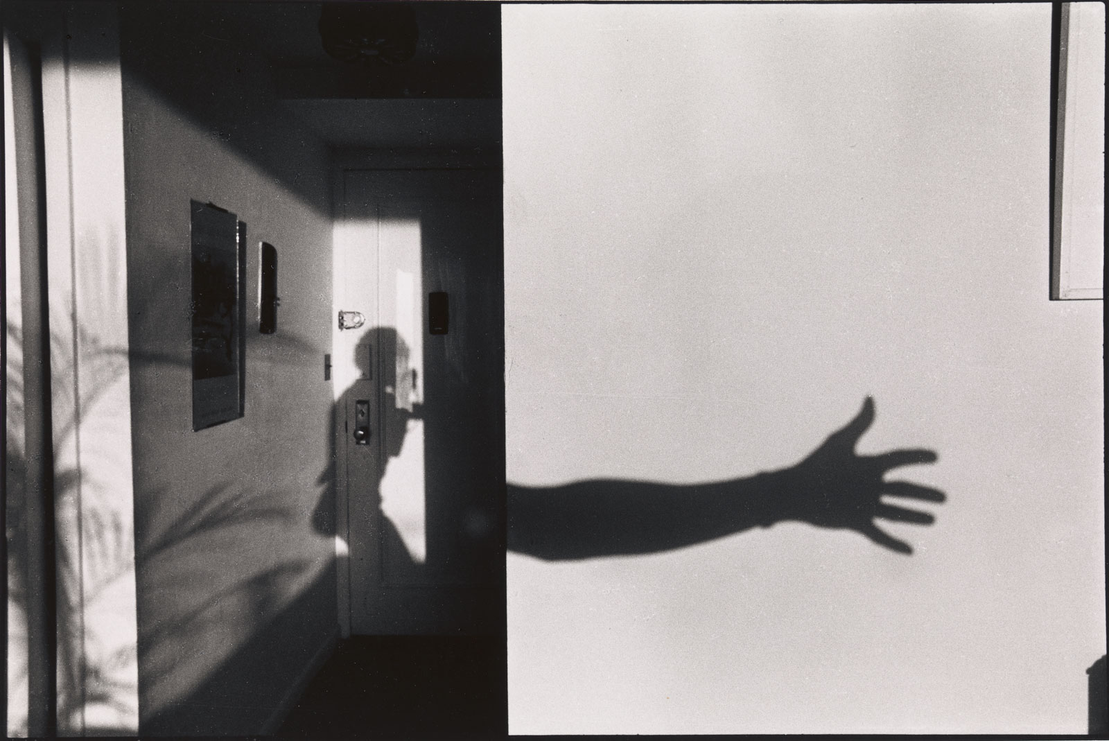 The shadow of the photographer's body and outstretched hand on a sunlit wall