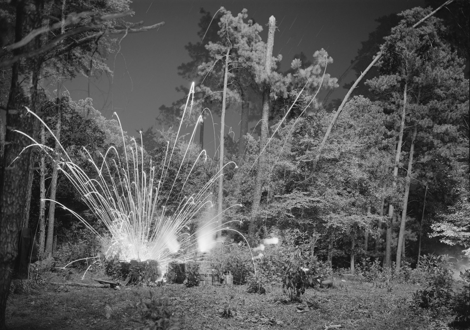 An explosion creates blasts of light in a wooded area in black and white