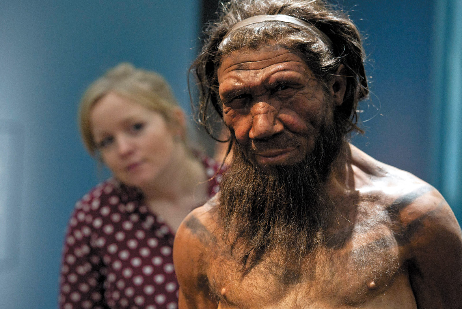 A model of a Neanderthal male in his twenties, Natural History Museum, London