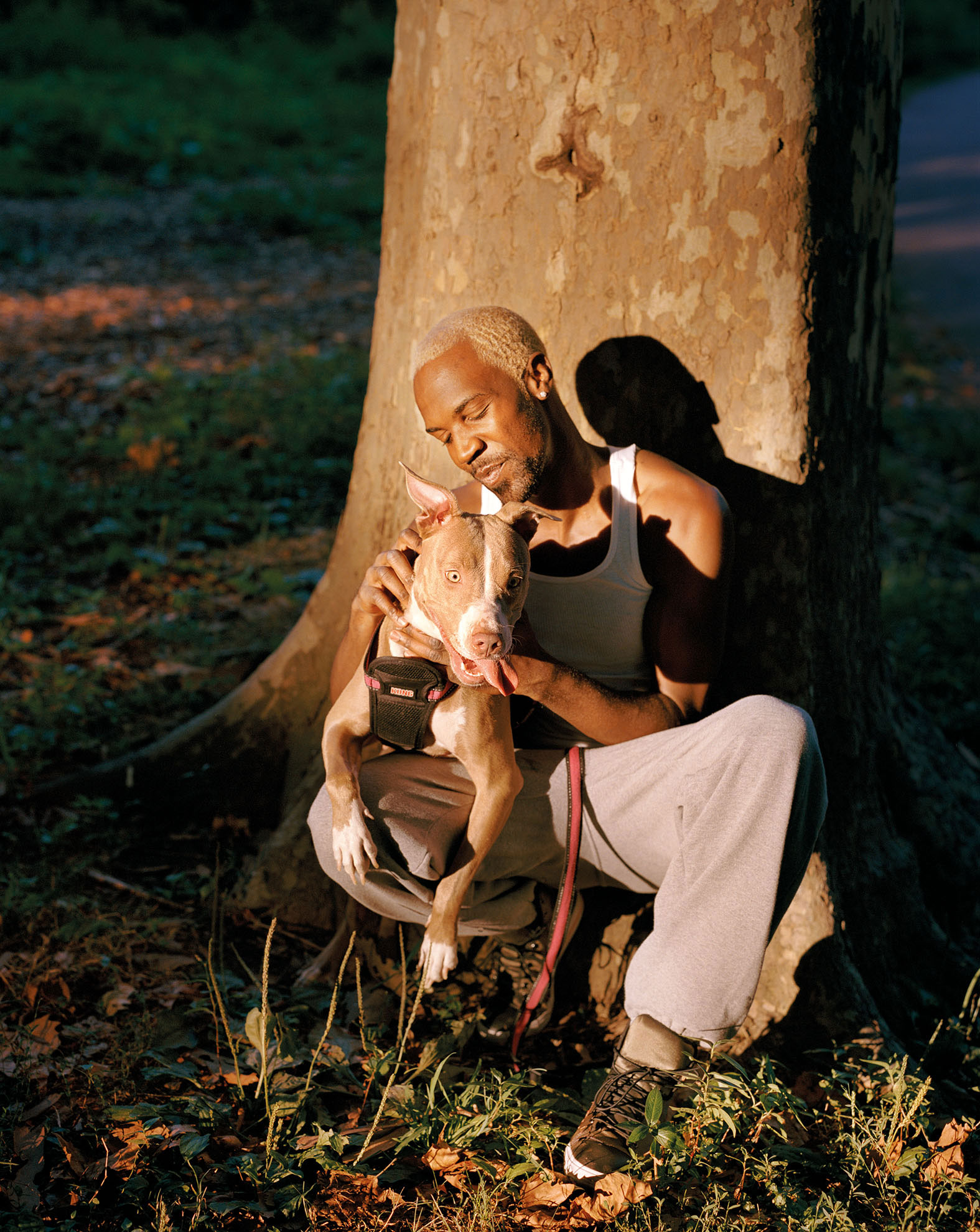 African American man with bleached hair holds a pit bull leaning against a tree, in direct sunlight