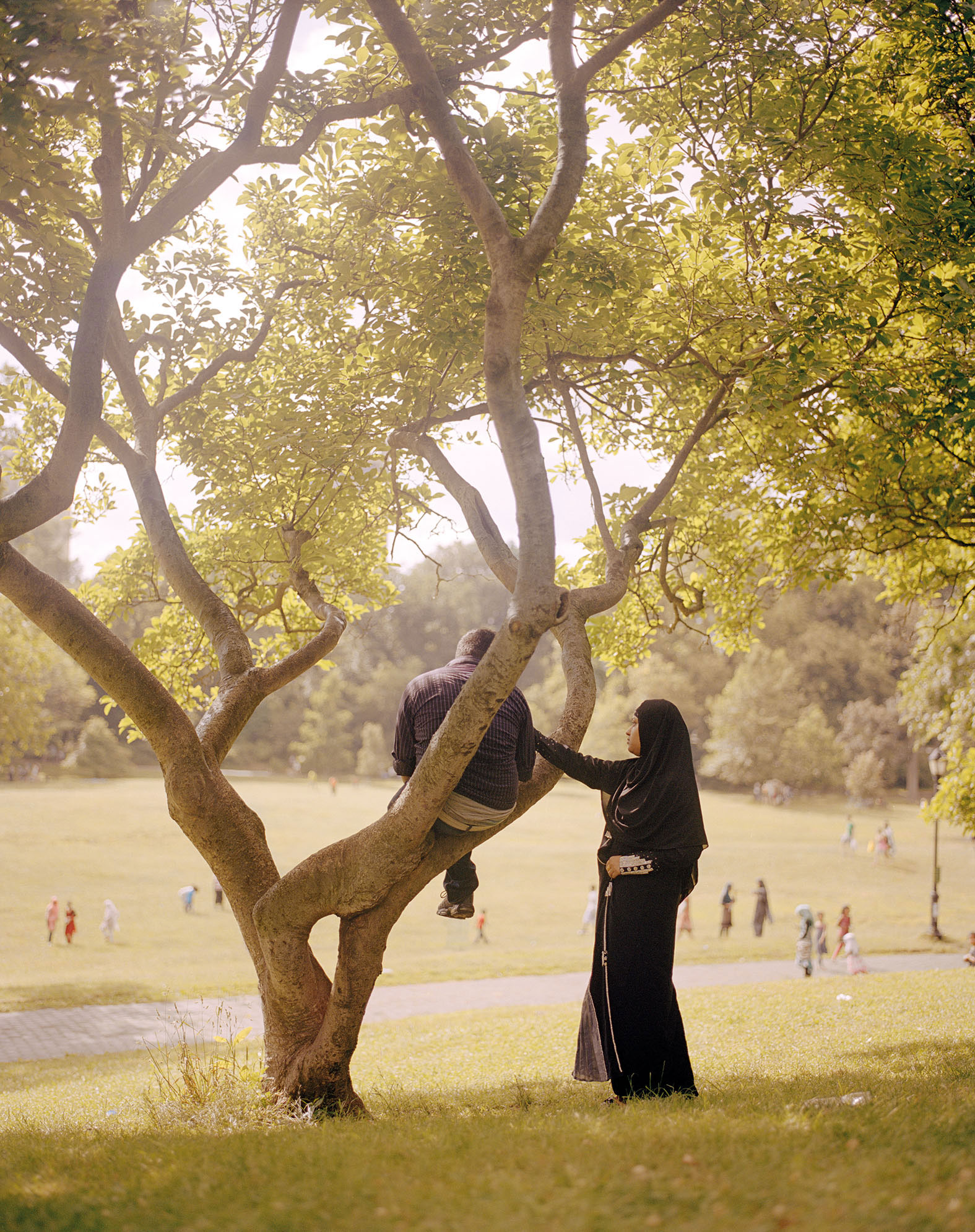 man sitting low in a tree while a woman in a burqa extends her hand to him