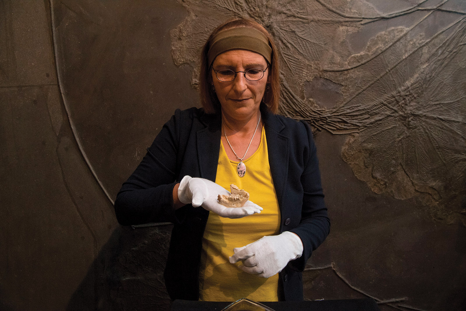 Madelaine Böhme holding a lower jawbone from Graecopithecus freybergi